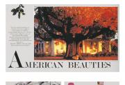 Các ấn phẩm xuất bản là ví dụ rất tốt cho thấy các mẫu định dạng format có khả năng thể hiện và nhấn mạnh các nét tính cách riêng trên mọi phương tiện truyền thông. Trên cùng là mẫu định dạng cho dàn trang của  Tạp chí Premiere về một ngôi sao nhạc rock & roll của những năm 50, thể hiện cảm giác phá cách, hơi náo nhiệt. Hình giữa là một dàn trang của Tạp chí Life giới thiệu một loại cây phổ biến nhất ở Mỹ, thể hiện cảm giác mang tính truyền thống. Hình dưới cùng là mẫu định dạng cho các trang của Tạp chí Wired giới thiệu tin về đồ công nghệ, thể hiện một cảm giác hướng tới tương lai.