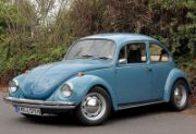 15026_Beetle